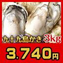 《九十九島産》殻付き生牡蠣3kg/開け方ガイド付生食可【送料無料】リピーター向け: