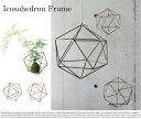 Icosahedron Frame Lsize/イコサヒードロンフレームLサイズ【フレームオブジェ テラリウム モビール エアプランツ カフェ 北欧 雅姫】