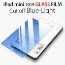 iPad mini ブルーライトカット ガラスフィルム iPad mini4 液晶保護フィルム 9H 強化 防指紋 2019 第5世代