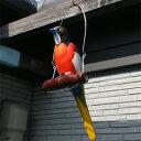 吊り下げ雑貨ガーデン雑貨・鳥のオブジェカラフル南国鳥のブランコ遊びウエルカムバード♪