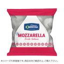ラッテリーア ソッレンティーナ 冷凍 牛乳モッツァレッラ ひとくちサイズ 250g 16袋セット 2035【送料無料】