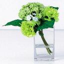 グリーン×グリーンの花束は、スッキリ・フレッシュな印象。フラワーアート「カーネーション&アジサイ」グリーン