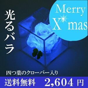 キューブ クローバー プリザーブドフラワー プレゼント クリスマス ブリザード フラワー