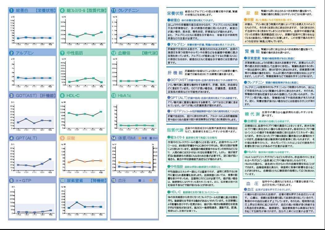 生活習慣病+糖尿病セルフチェック【送料無料】D...の紹介画像3