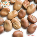 ファバビーン 小粒 1kg/1000g 【ソラマメ】【そら豆】【Faba Beans】【業務用】【仕入】【卸】【乾燥豆】【ドライ】14000円以上で送料無料【RCP】