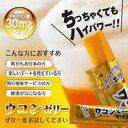 【ウコンゼリー(5本入)】クルクミン ウコン ターメリック うこんゼリー10P03Dec16