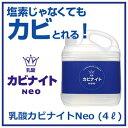 ショッピングカビナイト 【乳酸カビナイトNeo(4L)】
