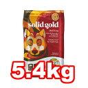 ○ケイエムティ ソリッドゴールド ウルフキング 5.4kg (ドッグフード/ペットフード/犬)