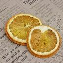【ハーバリウム用ドライフラワー】オレンジスライス2枚