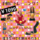 ダイレクトメール便選択可 【ソフトギムニク】 ソフトジム スモールボール (330T-9509)