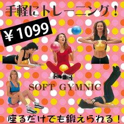 ���������ġڥ��եȥ���˥��ۥ��եȥ��ॹ�⡼��ܡ���(330T-9509)