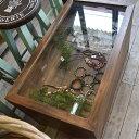 テーブル ショーケース ディスプレイ 収納付きテーブル セン...