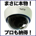 ダミーカメラ 防犯カメラ ダミー 監視カメラ DAM001-1