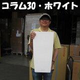 【送料・】レチューザ・コラム30