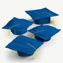 卒業 セレモニー 帽子 角帽 青 12セット 卒業 グラデュエーション タッセル付き ブルー 記念 劇 発表会