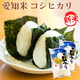 新<strong>米</strong> <strong>米</strong> 白<strong>米</strong> 10kg 送料無料 コシヒカリ 5kg×2袋 愛知県産 令和元年産 コシヒカリ お<strong>米</strong> 10キロ 安い あす楽 北海道・沖縄は追加送料
