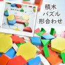 室内遊び 部屋遊び ASパターンブロック 250ピース 知育...