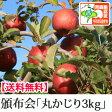 送料無料【青森りんご頒布会 丸かじり3kg】減農薬有機質肥料栽培の安心でおいしい青森りんごを6回に分けてお届けします!《青森県認証特別栽培農産物》