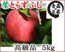 【青森りんご】葉とらずで味が濃縮葉とらずふじ高級品 5kg