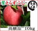【青森りんご】葉とらずで味が濃縮葉とらずふじ高級品 10kg