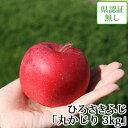 送料無料 ひろさきふじ(早生ふじ) 丸かじり 約3kg 県認証無し 小さめ 青森県産りんご