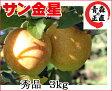 葉とらずりんご 【金星 秀品 約3kg 県認証無し】 きんせい りんご リンゴ 贈答用 お歳暮 お手軽 無袋 青森 林檎 リンゴ 葉とらず 認なし