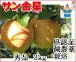 葉とらずりんご 【金星 秀品 約3kg 県認証有り】 きんせい りんご リンゴ 贈答用 お歳暮 お手軽 無袋 青森 林檎 リンゴ 葉とらず 特別栽培農産物