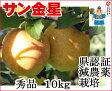 葉とらずりんご 【金星 秀品 約10kg 県認証有り】 きんせい りんご リンゴ 贈答用 お歳暮 お手軽 無袋 青森 林檎 リンゴ 葉とらず 特別栽培農産物