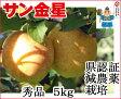 葉とらずりんご 【金星 秀品 約5kg 県認証有り】 きんせい りんご リンゴ 贈答用 お歳暮 お手軽 無袋 青森 林檎 リンゴ 葉とらず 特別栽培農産物