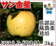 葉とらずりんご 訳あり 【金星 ほほえみ 約3kg 県認証有り】 キズ有り きんせい りんご リンゴ お手軽 無袋 青森 林檎 リンゴ 葉とらず ワケあり 特別栽培農産物
