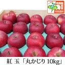 紅玉 こうぎょく 丸かじり 約10kg 県認証有り りんご リンゴ 小さめ 減農薬栽培 特別栽培農産物認証 青森 国産 認有り