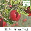 紅玉 こうぎょく 秀品 約3kg 県認証無し りんご リンゴ お手軽品 青森 国産 認なし