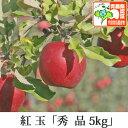 紅玉 こうぎょく 秀品 約5kg 県認証有り りんご リンゴ お手軽 減農薬栽培 特別栽培農産物認証 青森 国産 認有り