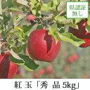 紅玉 こうぎょく 秀品 約5kg 県認証無し りんご リンゴ お手軽品 青森 国産 認なし