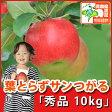 葉とらずサンつがる 秀品 約10kg 県認証有り りんご リンゴ お手軽 減農薬栽培 特別栽培農産物認証 青森 国産