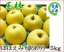 王林 おうりん ほほえみ(訳あり) 約5kg 県認証無し りんご リンゴ 家庭用 青森 国産 認なし