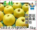 王林 おうりん ほほえみ(訳あり) 約5kg 県認証有り りんご リンゴ 家庭用 減農薬栽培 特別栽培農産物 青森 国産 認有り