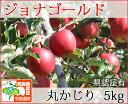 ジョナゴールド 丸かじり 約5kg 県認証有り りんご リンゴ 小さめ 減農薬栽培 特別栽培農産物認証 青森 国産 認有り