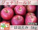 ジョナゴールド ほほえみ(訳あり) 約5kg 県認証有り りんご リンゴ 訳あり 減農薬栽培 特別栽培農産物認証 青森 国産 認有り