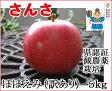 さんさ ほほえみ(訳あり) 約5kg 県認証有り りんご リンゴ 家庭用 減農薬栽培 特別栽培農産物 青森 国産 認有り