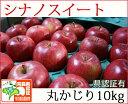 シナノスイート 丸かじり 約10kg 県認証有り りんご リンゴ 小さめ 減農薬栽培 特別栽培農産物 青森 国産 認有り