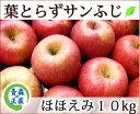 葉とらずりんご 訳あり【葉とらずサンふじ ほほえみ(訳あり) 約10kg 県認証無し】 りんご 家庭用 青森 国産 キズ有り 葉とらず ふじ 青森りんご