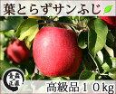 葉とらずサンふじ 高級品 約10kg 県認証無し りんご リンゴ 贈答用 青森 国産 認なし