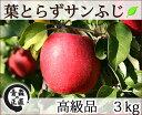 葉とらずサンふじ 高級品 約3kg 県認証無し りんご リンゴ 贈答用 青森 国産 認なし