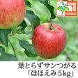 葉とらずサンつがる ほほえみ(訳あり) 約5kg 県認証有り りんご リンゴ 訳あり 減農薬栽培 特別栽培農産物認証 青森 国産