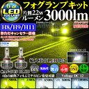 LEDフォグランプ H8 H9 H11兼用 輸入車用 CREE 3000ルーメン led LEDフォグ ヘッド デイライト バルブ LED IP65防水 300...