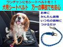 犬のリード シートベルト パラコードペット用品【職人手作り】...