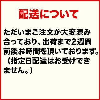 価格 109,075円 (税込117,801 円 ...