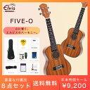 タイムセール!【初心者セット8点!】ELVIS エルビス ウクレレ FIVE-O コンサートサイ
