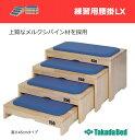 【ポイント5倍】 練習用腰掛LX TB-1266 02P05Nov16【高田ベッド】【納期:受注生産